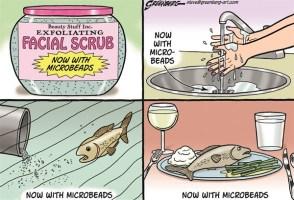 microbeads-cartoon-by-steve-greenberg