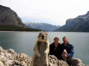 melissa brandts squirrel
